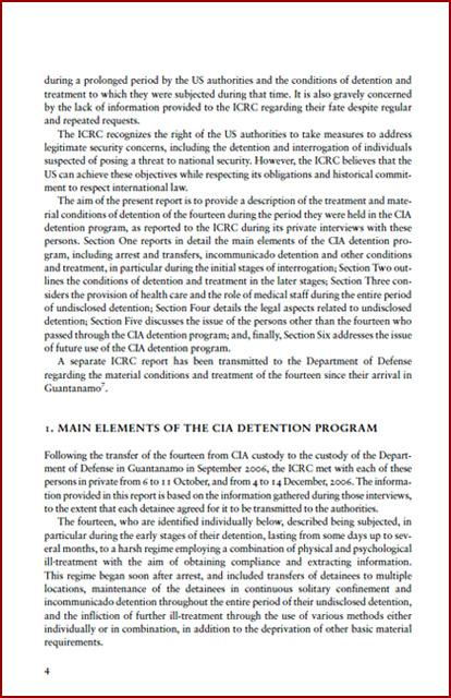 Icrc report p 04